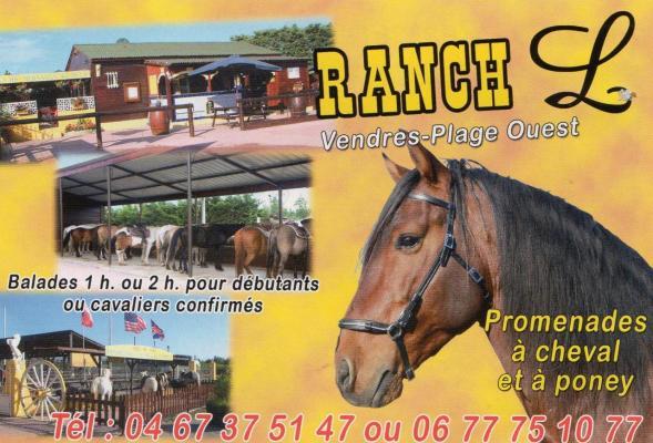 chevaux pour les balades
